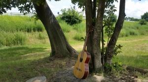 武庫川河川敷になぜか野良ギターが置かれている。