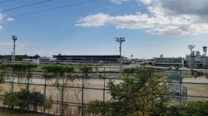 昨日の園田競馬場。けっこう観客がいる。